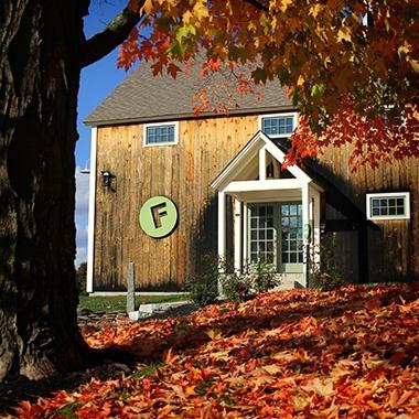 Fall at Farm